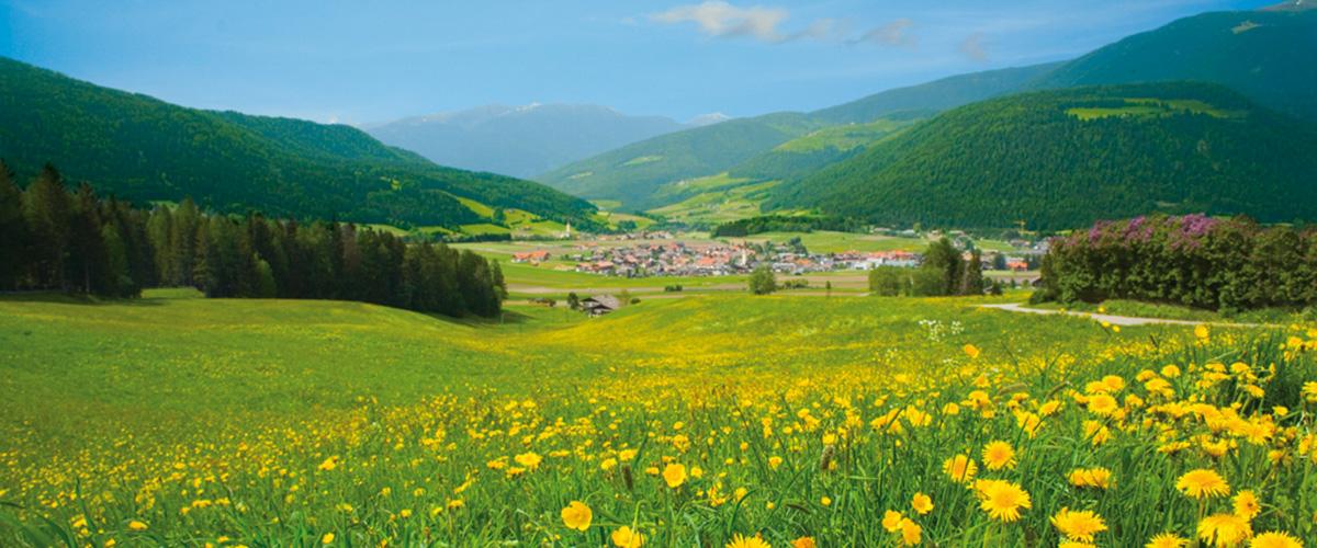 Olang Südtirol im Sommer